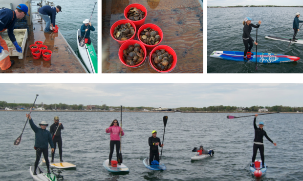 gpr-photo-2-paddleboarders-planting-scallops